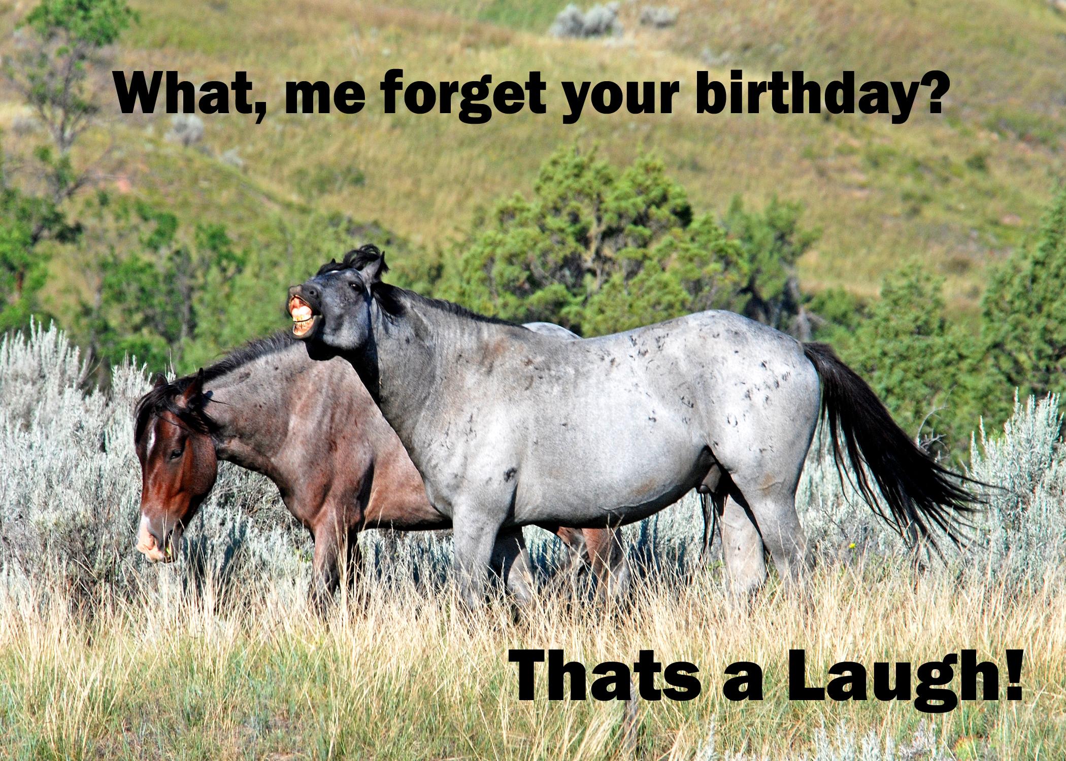 Horse Birthday Party Invitations for perfect invitation sample