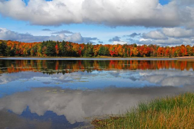 Autumn Colors In Vilas Park Lagoon >> Photo Gallery Wisconsin Fall Colors Wolf S Vision Nature Photography