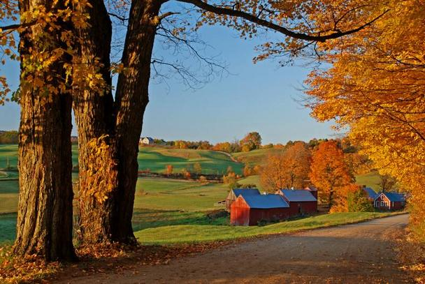 fall colors and scenery