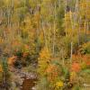 Palisade Creek - Full viewing the full collection of MN fall colors select the Fall Colors/Scenery link and select Minnesota.