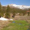 Spring in Tioga Pass - Yosemite