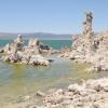 Tufas at Mono Lake VII